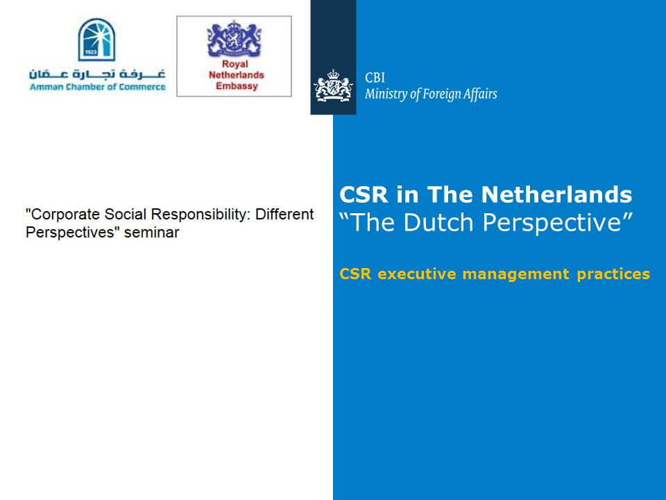 CSR in The Netherlands The Dutch Perspective CSR executive management practices