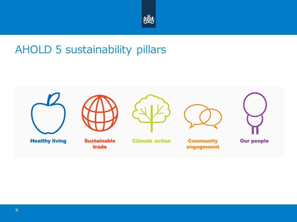 AHOLD 5 sustainability pillars 9