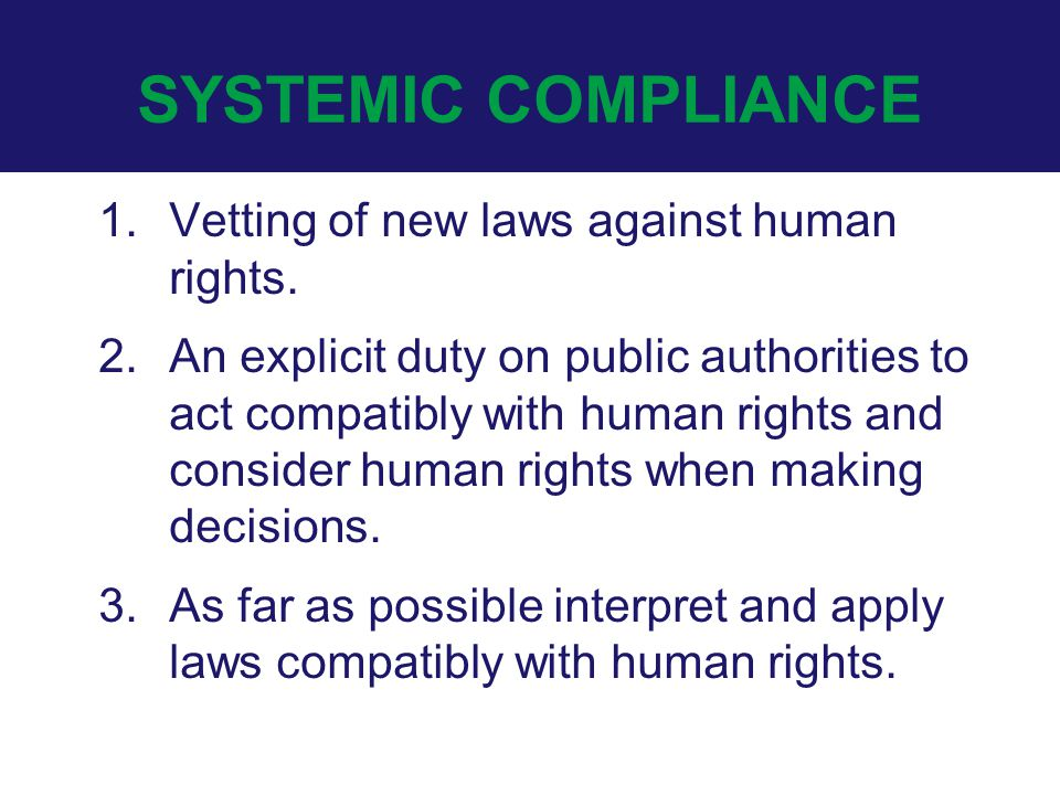 SYSTEMIC COMPLIANCE 1.Vetting of new laws against human rights.