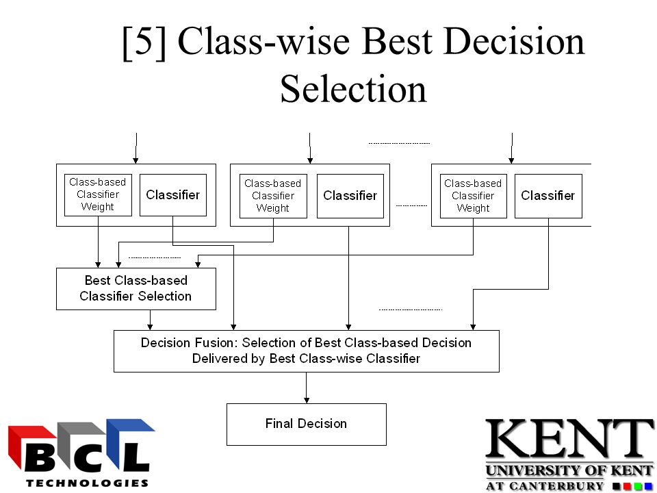 [5] Class-wise Best Decision Selection