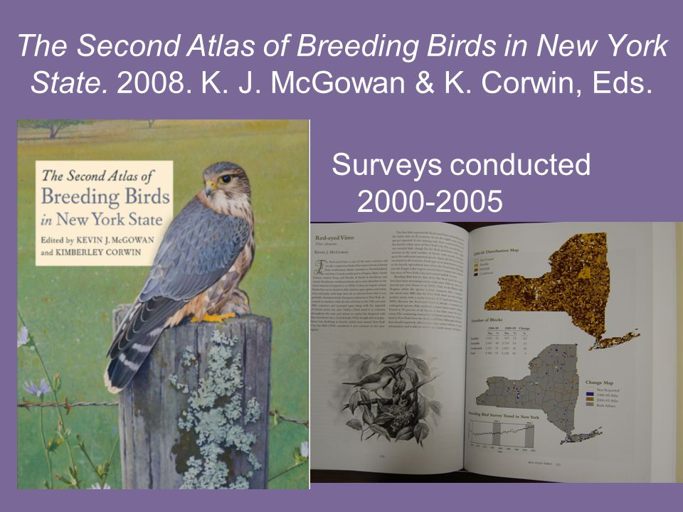 The Second Atlas of Breeding Birds in New York State.