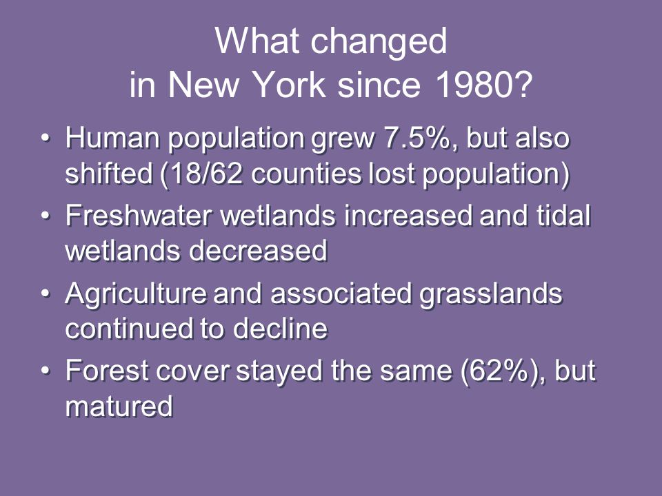 What changed in New York since 1980.