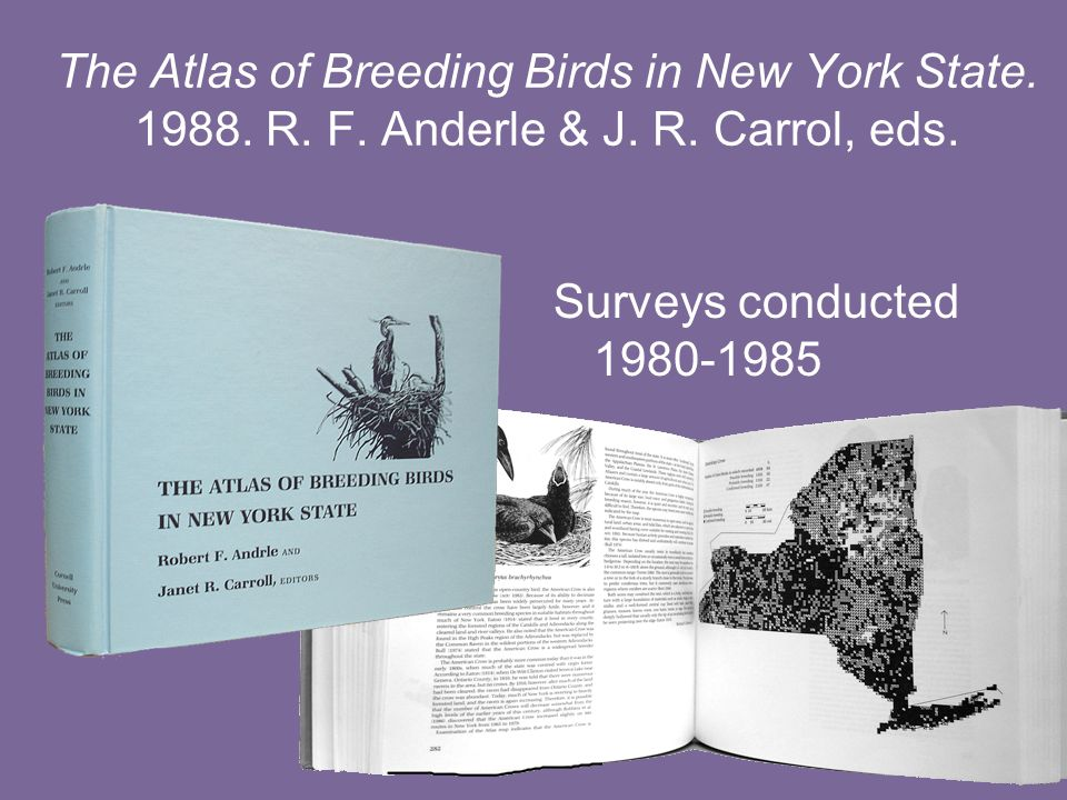 The Atlas of Breeding Birds in New York State. 1988.