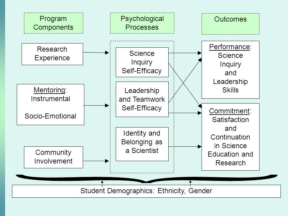 Program Components Psychological Processes Outcomes Research Experience Community Involvement Mentoring: Instrumental Socio-Emotional Performance: Sci