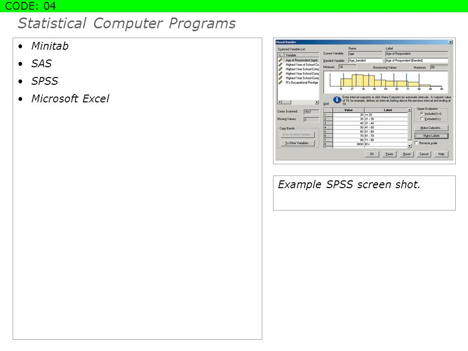Statistical Computer Programs Minitab SAS SPSS Microsoft Excel STANDARD SLIDE CODE: 04 Example SPSS screen shot.