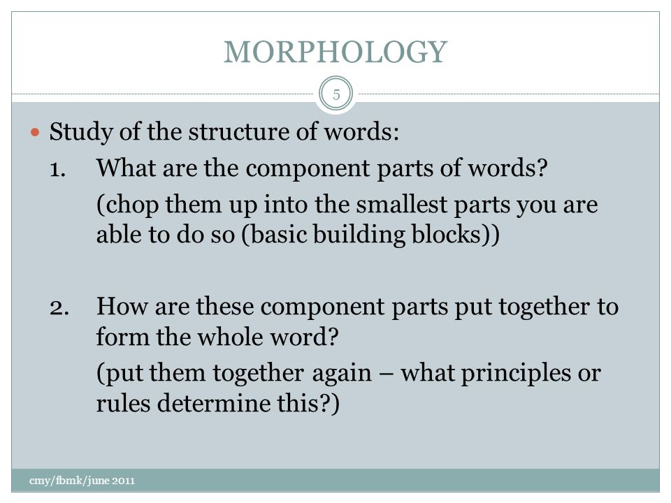 MORPHOLOGY Study of the structure of words: 1.What are the component parts of words.