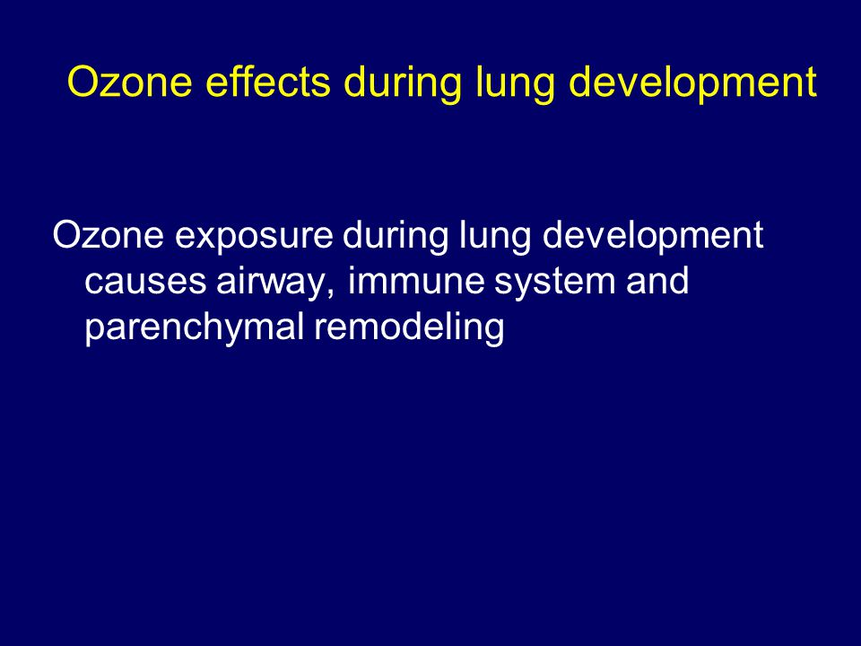 Ozone effects during lung development Ozone exposure during lung development causes airway, immune system and parenchymal remodeling