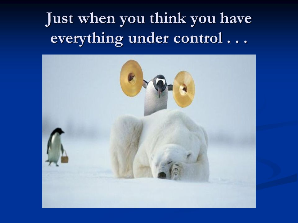 Just when you think you have everything under control...