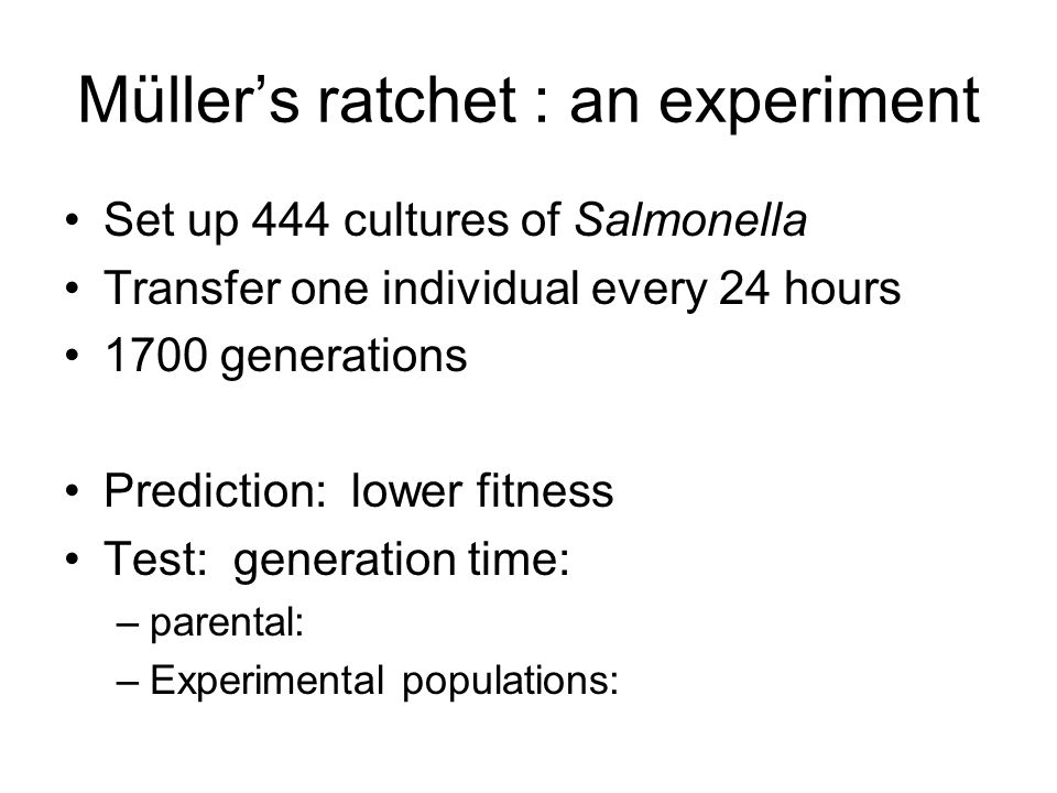 Müller's ratchet : an experiment Set up 444 cultures of Salmonella Transfer one individual every 24 hours 1700 generations Prediction: lower fitness T