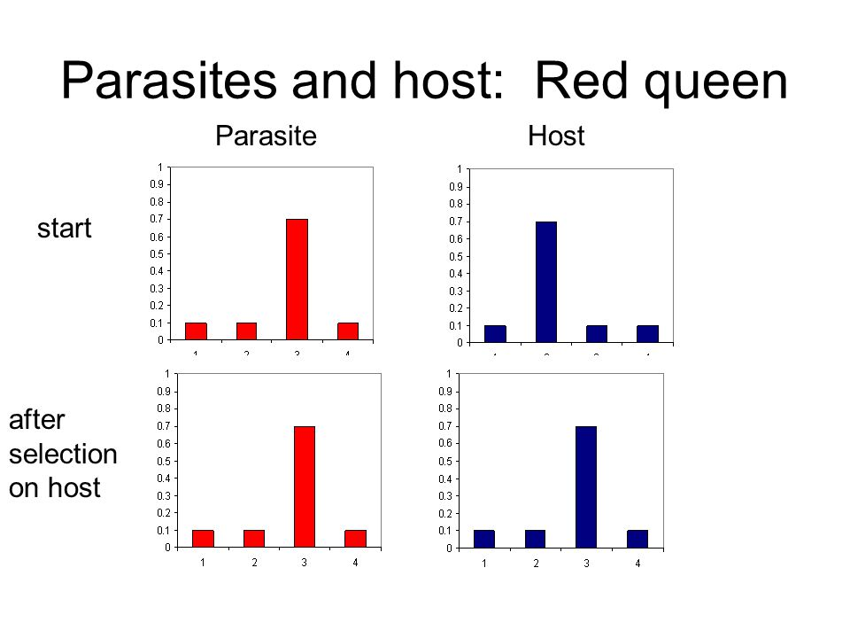 Parasites and host: Red queen ParasiteHost start after selection on host