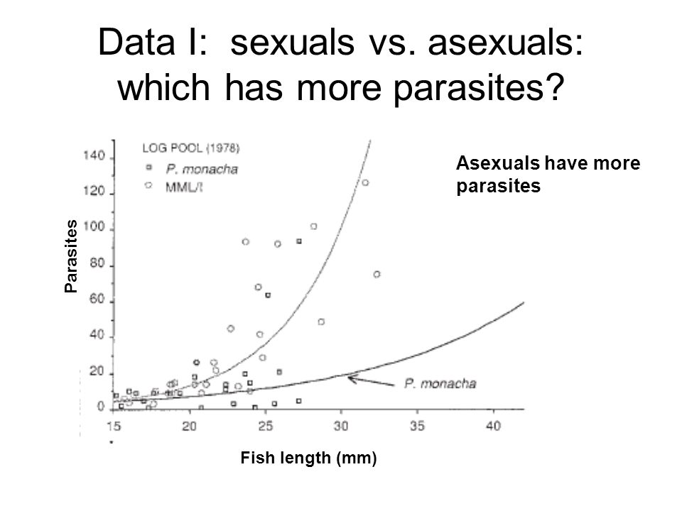 Data I: sexuals vs. asexuals: which has more parasites? Parasites Fish length (mm) Asexuals have more parasites