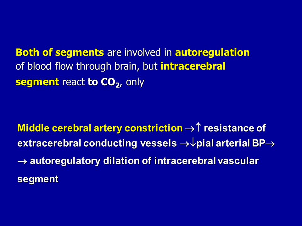 Both of segments are involved in autoregulation of blood flow through brain, but intracerebral segment react to CO 2, only Middle cerebral artery cons