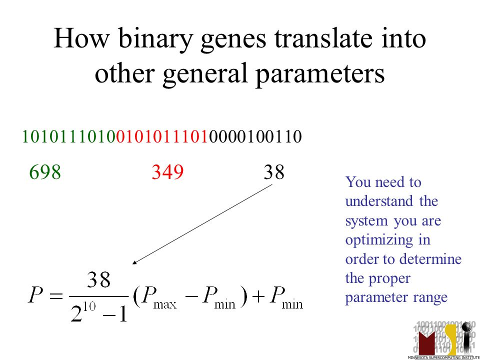13 How binary genes translate into other general parameters 101011101001010111010000100110 698 349 38 You need to understand the system you are optimi