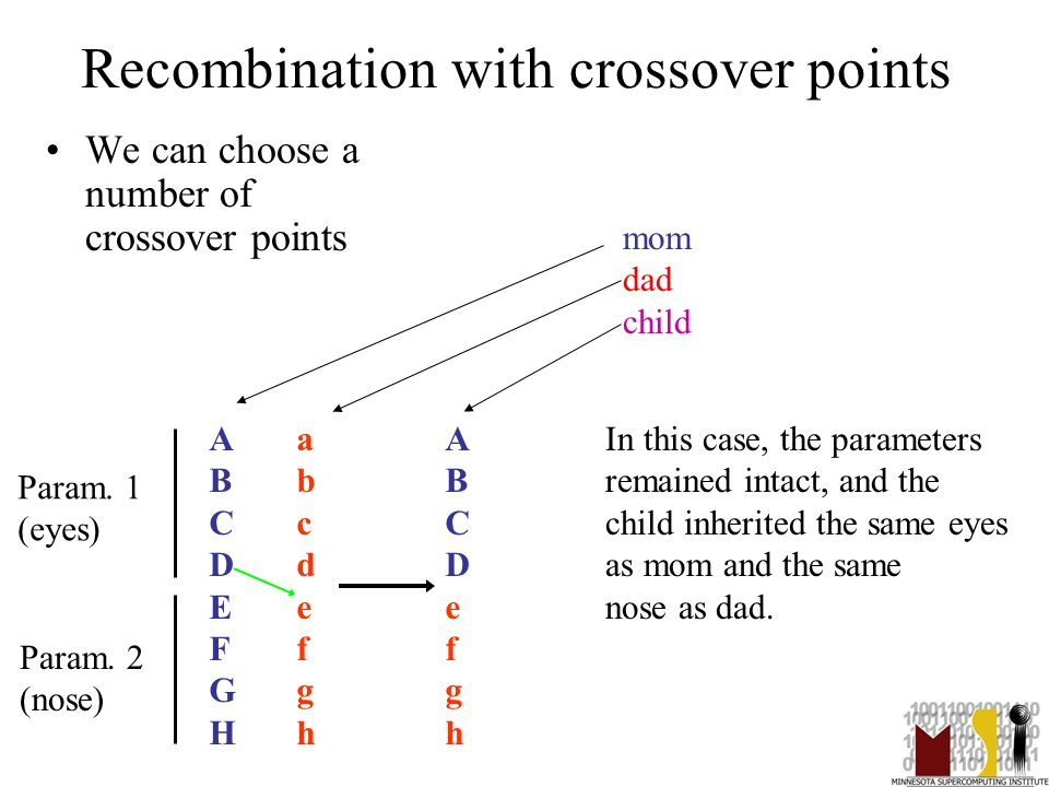 27 Recombination with crossover points We can choose a number of crossover points ABCDEFGHABCDEFGH abcdefghabcdefgh ABCDefghABCDefgh Param.