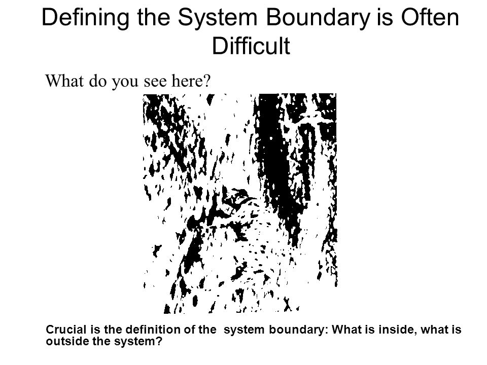 Defining the System Boundary is Often Difficult What do you see here.