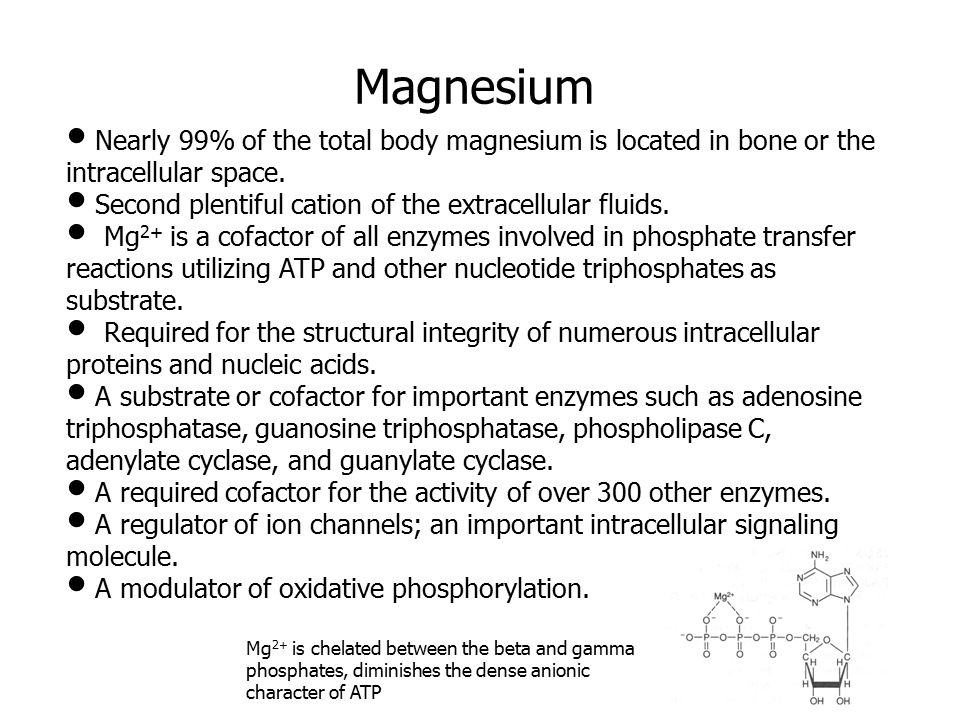 Nearly 99% of the total body magnesium is located in bone or the intracellular space.
