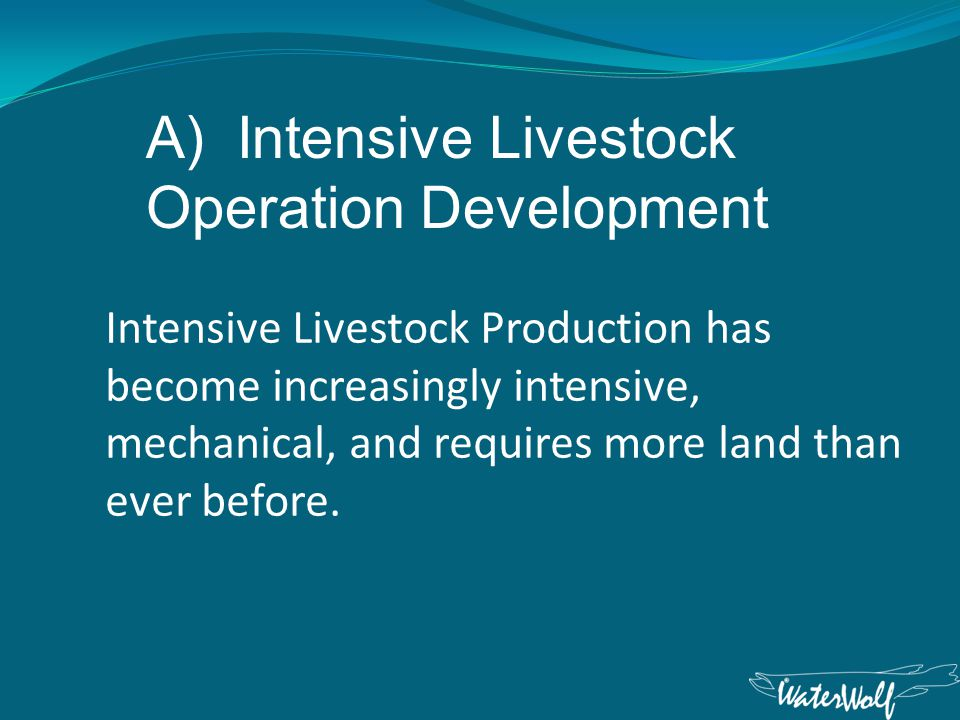 Intensive Livestock Production has become increasingly intensive, mechanical, and requires more land than ever before.