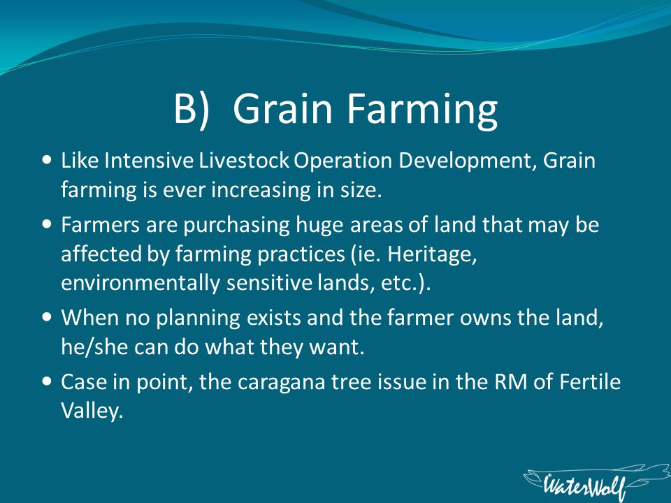B) Grain Farming Like Intensive Livestock Operation Development, Grain farming is ever increasing in size.