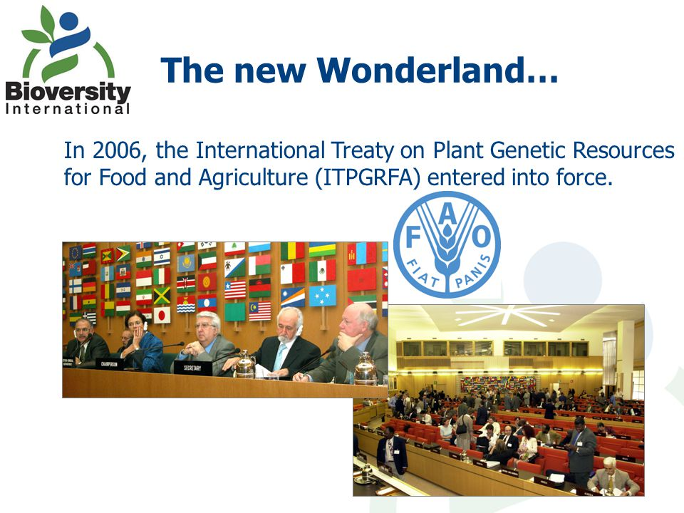The new Wonderland… In 2006, the International Treaty on Plant Genetic Resources for Food and Agriculture (ITPGRFA) entered into force.