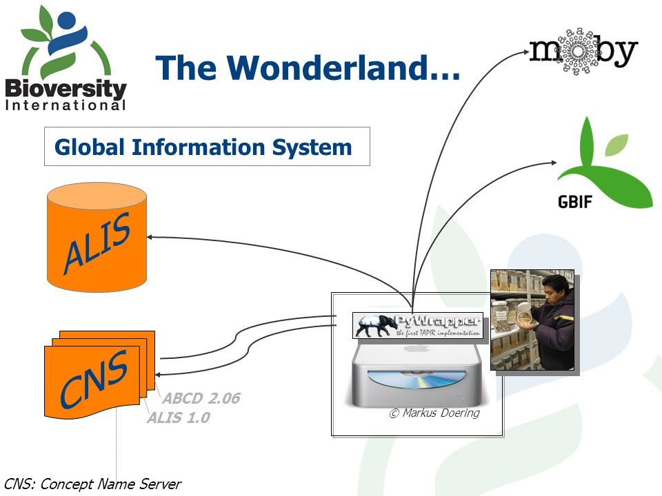 The Wonderland… Global Information System CNS: Concept Name Server © Markus Doering ABCD 2.06 ALIS 1.0