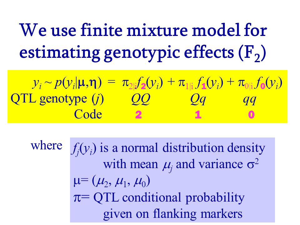 We use finite mixture model for estimating genotypic effects (F 2 ) y i ~ p(y i | ,  ) =  2|i f 2 (y i ) +  1|i f 1 (y i ) +  0|i f 0 (y i ) QTL genotype (j) QQ Qq qq Code 2 1 0 f j (y i ) is a normal distribution density with mean  j and variance  2  = (  2,  1,  0 )  = QTL conditional probability given on flanking markers where