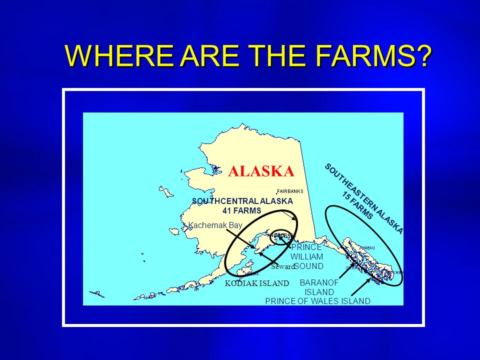 WHERE ARE THE FARMS? SOUTHEASTERN ALASKA 15 FARMS PRINCE WILLIAM SOUND KODIAK ISLAND BARANOF ISLAND PRINCE OF WALES ISLAND Kachemak Bay Seward SOUTHCE