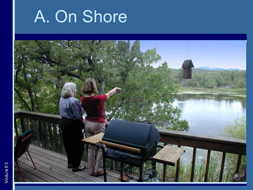A. On Shore Module 6:3