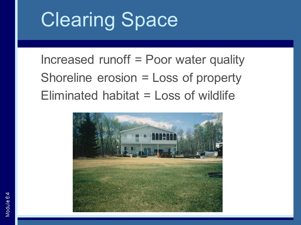 Clearing Space Increased runoff = Poor water quality Shoreline erosion = Loss of property Eliminated habitat = Loss of wildlife Module 6:4