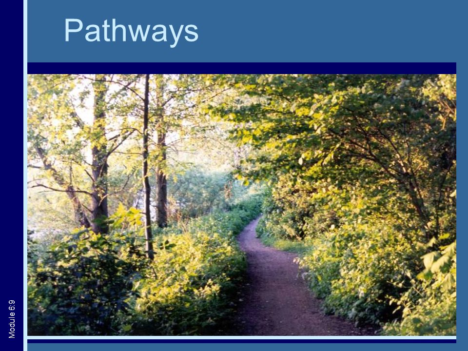 Pathways Module 6:9