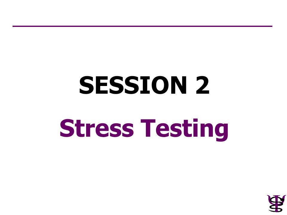 SESSION 2 Stress Testing
