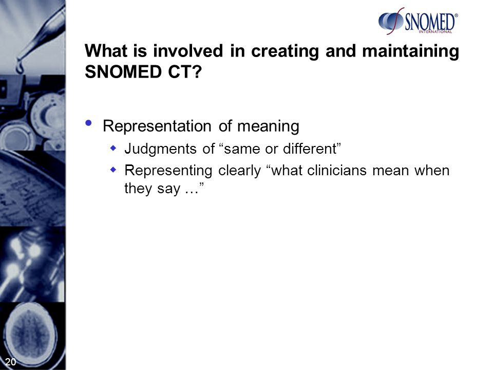20 What is involved in creating and maintaining SNOMED CT.