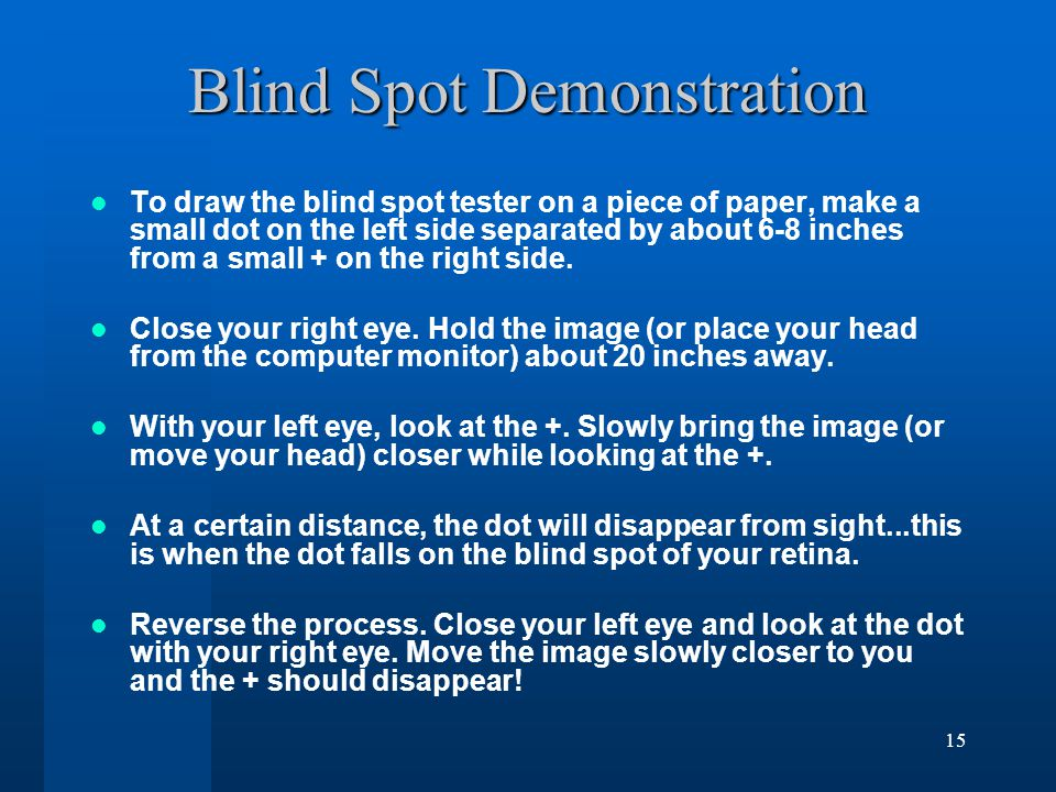 14 Blind Spot Blind Spot Blind Spot (pgs.89-90): The gap in the receptor layer of the retina where the bundle of retinal ganglion cell axons leave the