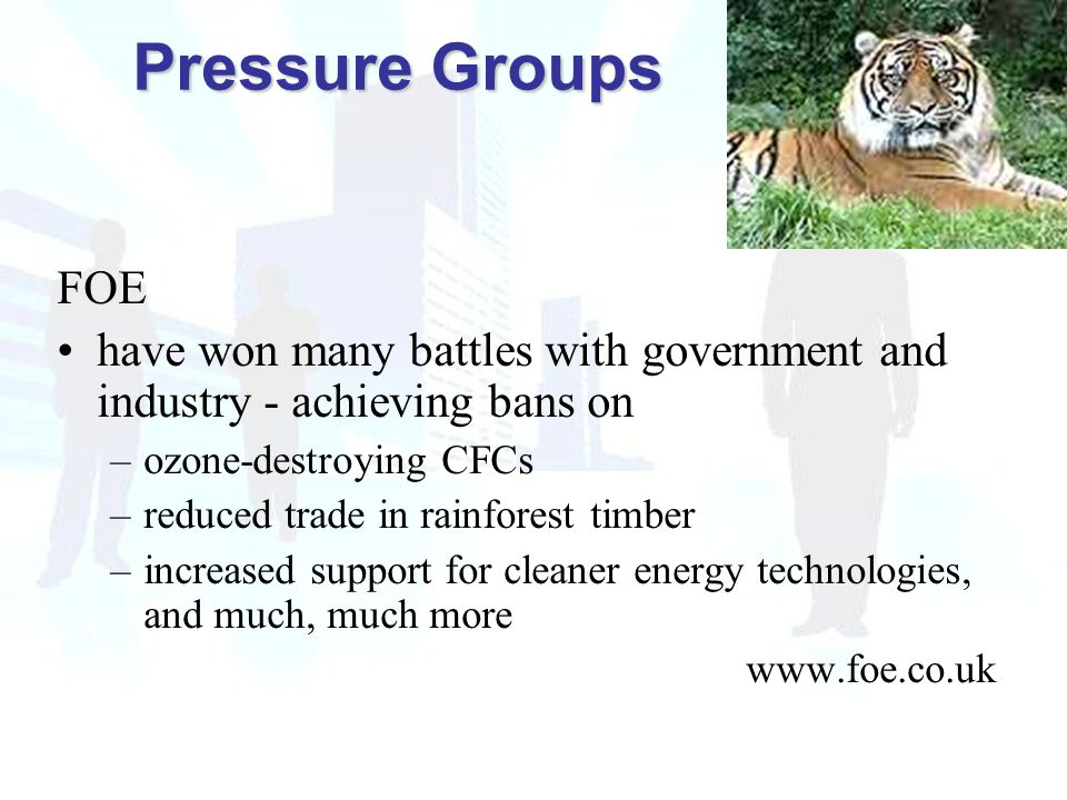 FOE have won many battles with government and industry - achieving bans on –ozone-destroying CFCs –reduced trade in rainforest timber –increased support for cleaner energy technologies, and much, much more www.foe.co.uk Pressure Groups