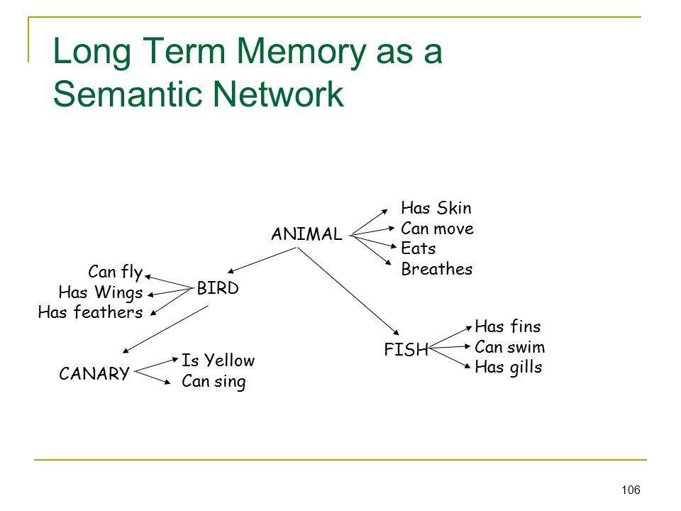 106 Long Term Memory as a Semantic Network ANIMAL Has Skin Can move Eats Breathes BIRD Can fly Has Wings Has feathers FISH Has fins Can swim Has gills CANARY Is Yellow Can sing