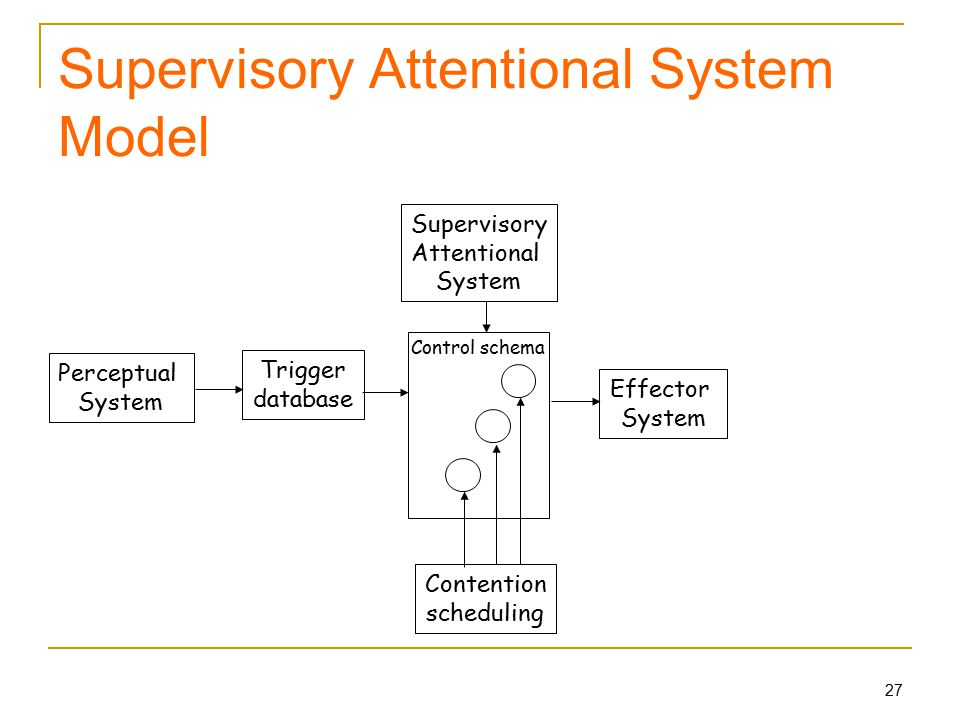 27 Supervisory Attentional System Model Perceptual System Supervisory Attentional System Effector System Contention scheduling Trigger database Control schema