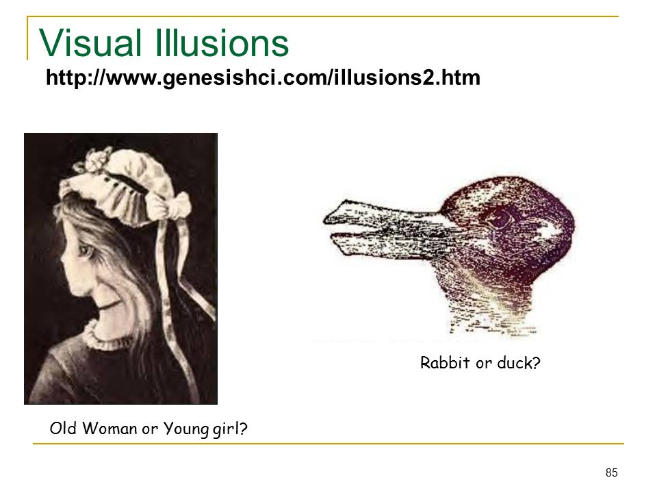 85 Visual Illusions Old Woman or Young girl. Rabbit or duck.
