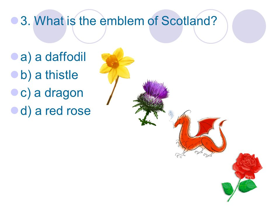 3. What is the emblem of Scotland a) a daffodil b) a thistle c) a dragon d) a red rose