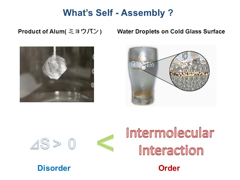 What's Self - Assembly .