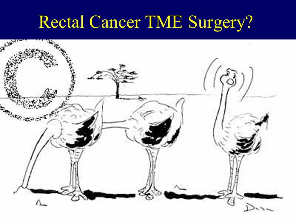 Goals Rectal Cancer Management Reduce local recurrence Increase survival Maintain normal function – Avoiding a permanent colostomy