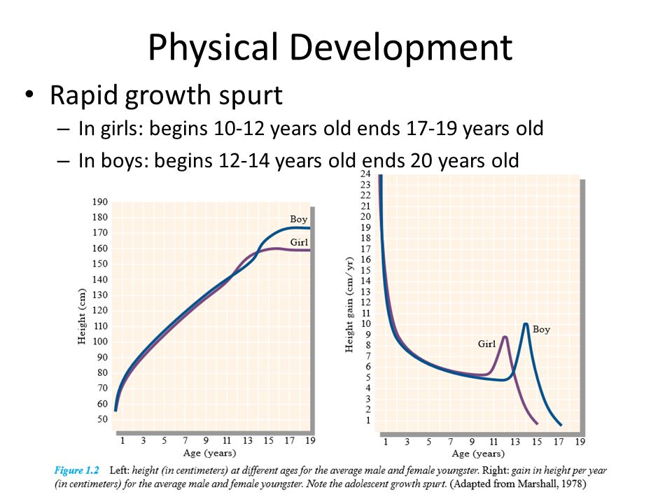Puberty & Sexual Development Sequence of physical changes largely predictable, but with great variability in beginning age and pace
