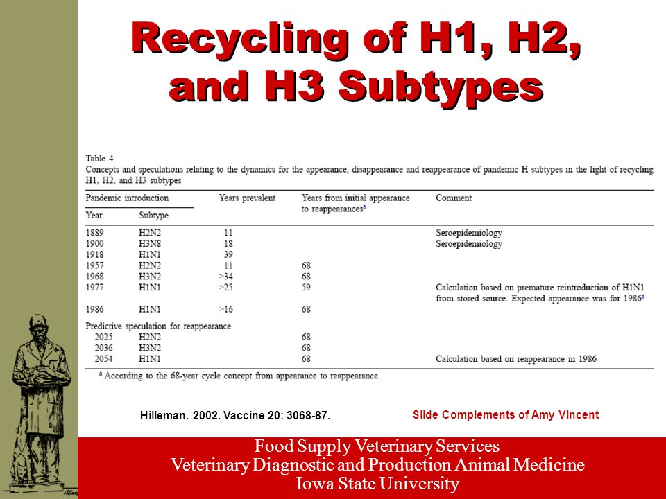 Food Supply Veterinary Services Veterinary Diagnostic and Production Animal Medicine Iowa State University Recycling of H1, H2, and H3 Subtypes Hilleman.