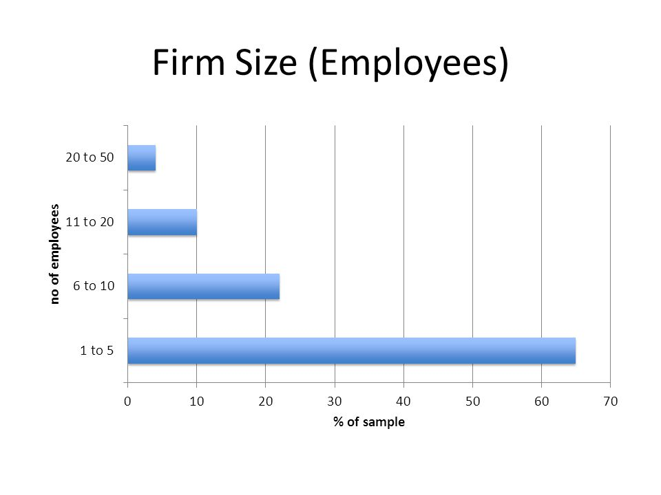 Firm Size (Employees)