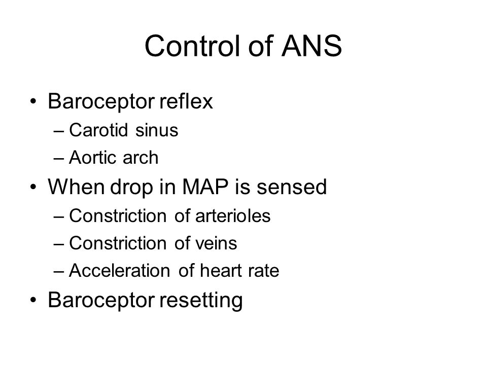 Control of ANS Baroceptor reflex –Carotid sinus –Aortic arch When drop in MAP is sensed –Constriction of arterioles –Constriction of veins –Accelerati