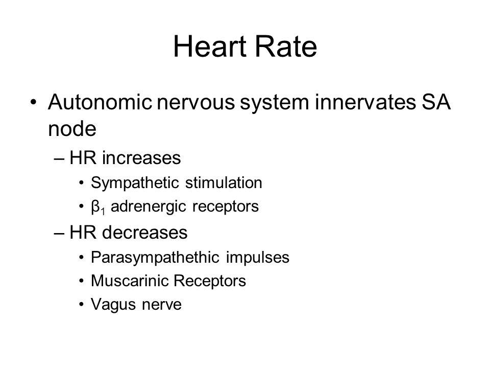 Stroke Volume Myocardial contractility –Cardiac stretch (Starling's law of the Heart) –Sympathetic stimulation (β 1 receptors) Cardiac preload Cardiac afterload