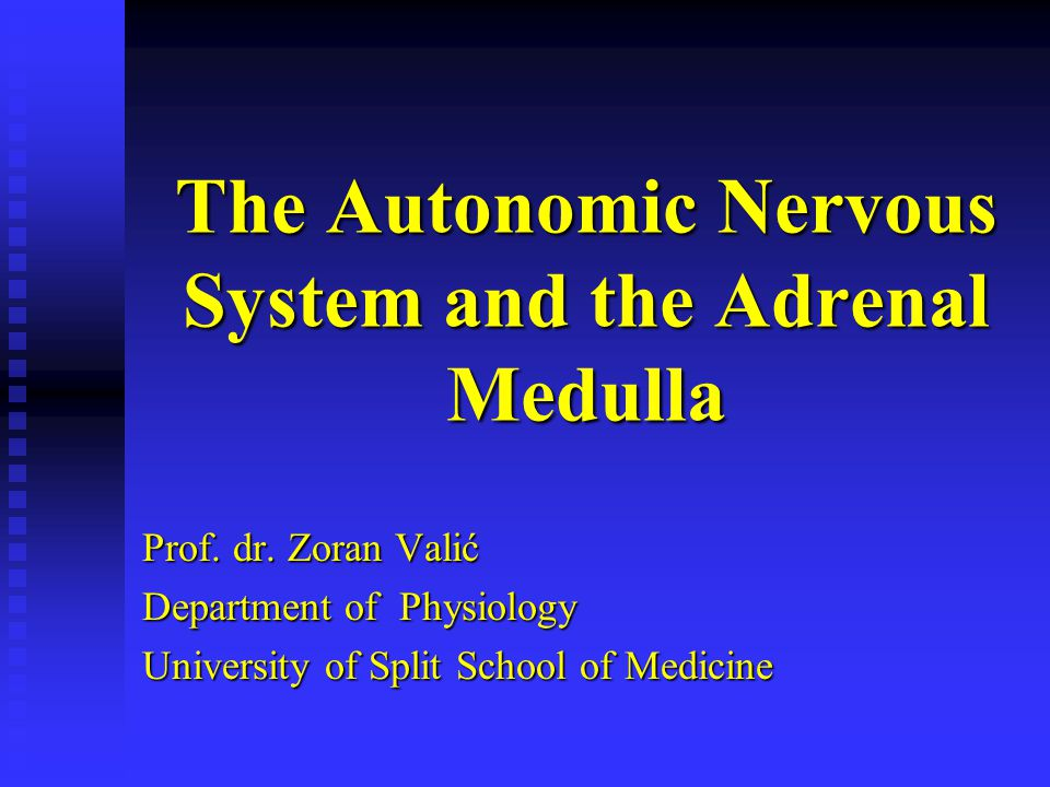 The Autonomic Nervous System and the Adrenal Medulla Prof. dr. Zoran Valić Department of Physiology University of Split School of Medicine