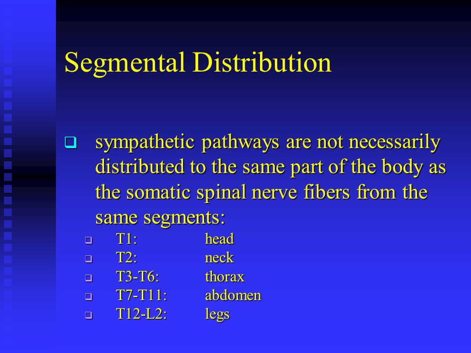 Segmental Distribution  sympathetic pathways are not necessarily distributed to the same part of the body as the somatic spinal nerve fibers from the