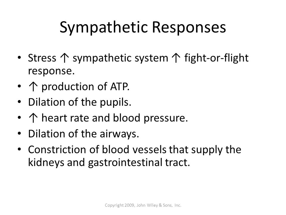 Sympathetic Responses Stress ↑ sympathetic system ↑ fight-or-flight response.