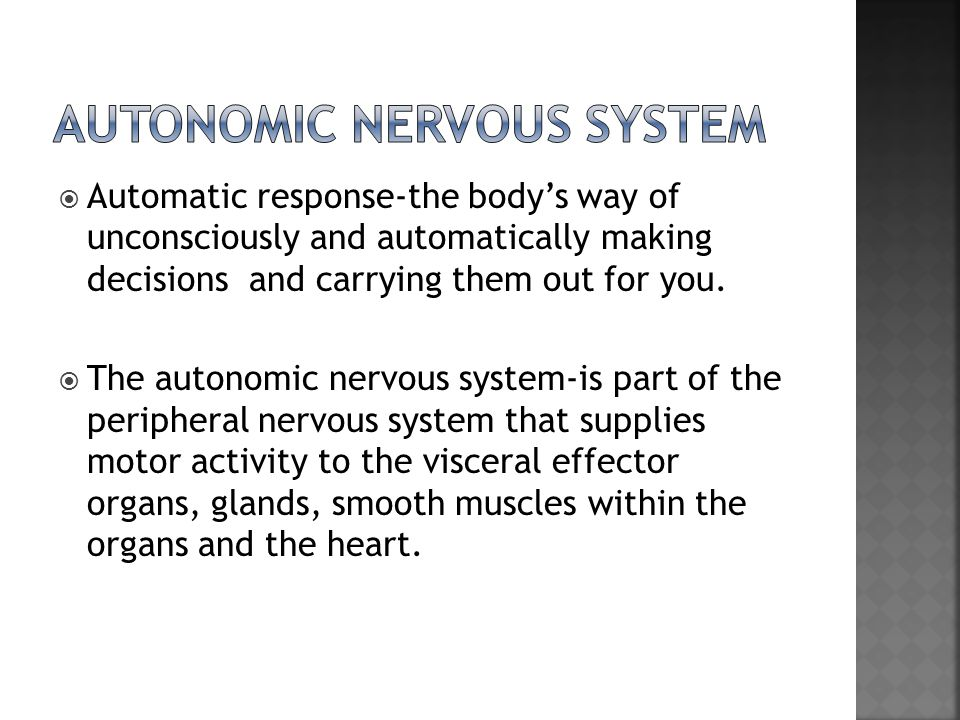  The two divisions of the ANS are:  sympathetic  Parasympathetic  Dual Innervation a single organ receives nerve fibers from both divisions of the ANS  Sympathetic nervous system- is activated during periods of stress or times when a person feels threatened.