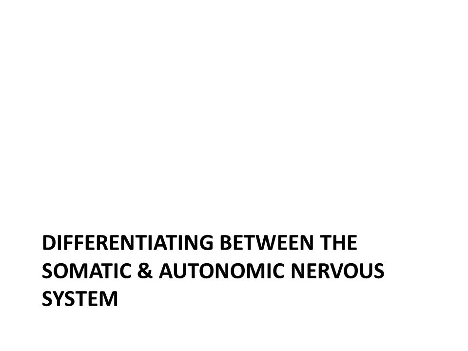 DIFFERENTIATING BETWEEN THE SOMATIC & AUTONOMIC NERVOUS SYSTEM