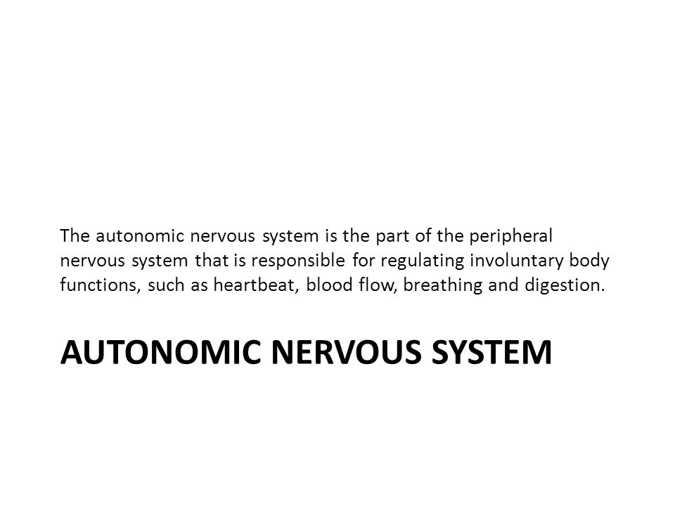 Divisions of ANS SYMPATHETIC NERVOUS SYSTEM/ Thoracolumbar Division Fight, flight or Fright.